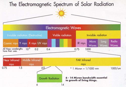 Far infrared light penetration of human body